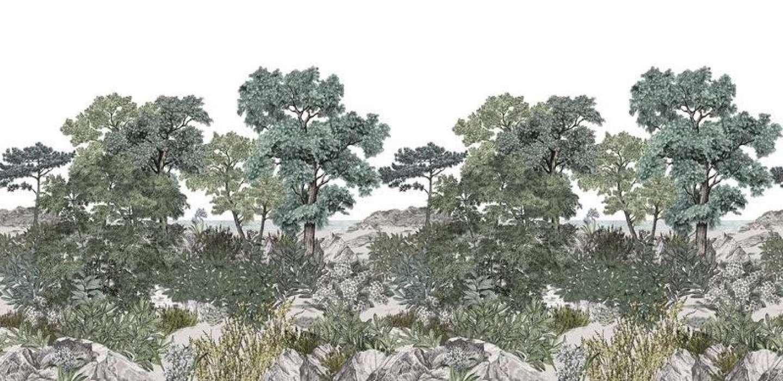 Décor mural Forêt de Bretagne